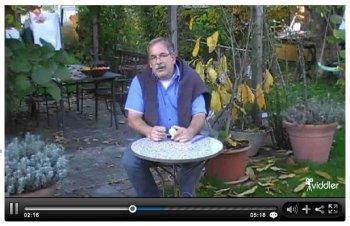 Gartenvideo von Markus Kobelt